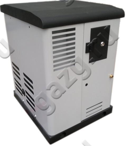 Газовый генератор REG GG6SV